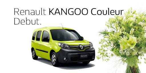 Renault KANGOO Couleur Debut.